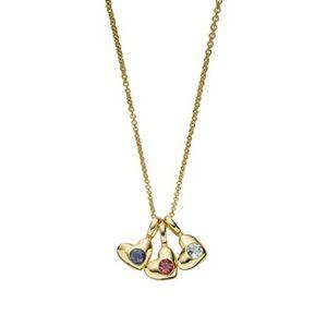Luna & Stella Heart Birthstone Necklace