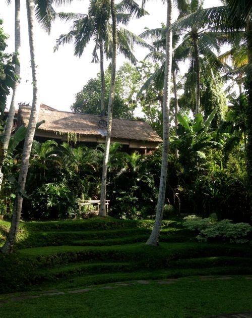 Bali Yoga Barn