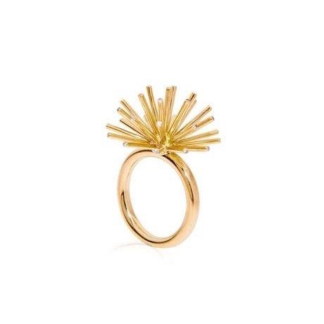 Coleoptere Ring
